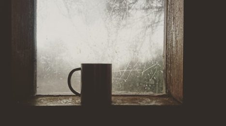 mug in window